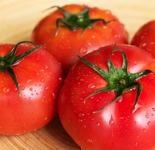 低カロリーで健康にも美肌にも♪魅力いっぱい真っ赤なトマトのサムネイル画像