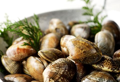 潮干狩りの定番☆あさりの事を調べよう!そのカロリーや絶品レシピ♪のサムネイル画像