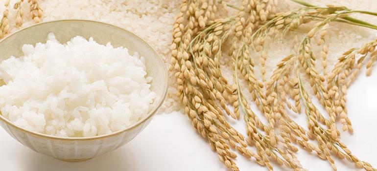 みんな大好きなお米。お米を食べると太る?食べても太らない方法は?のサムネイル画像