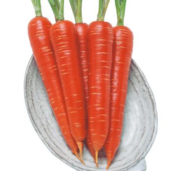 意外と知らない!健康にお薦め食品!にんじんのカロリーと栄養効果!のサムネイル画像