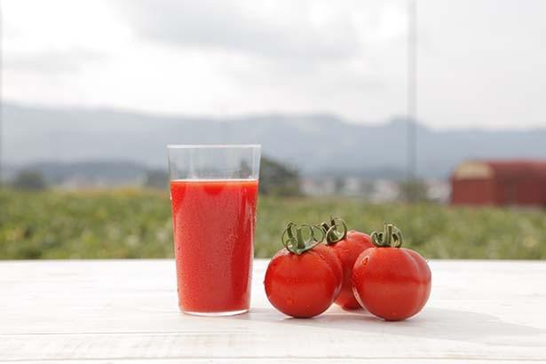 トマトジュースの効能とは何でしょうか?トマトジュースの効能!のサムネイル画像