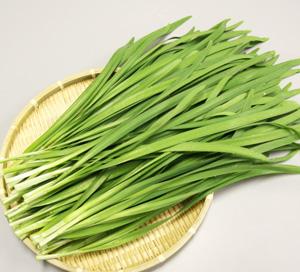 ニラの栄養や健康効果とはどんなものか?調べてみたニラの栄養とは?のサムネイル画像