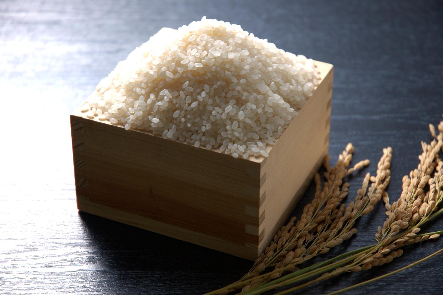 日本人はやっぱりお米!しっかり食べて綺麗に!お米ダイエットのサムネイル画像
