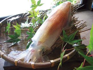 こんなにあったの!イカの知られざる栄養とみんなに嬉しい栄養効果!のサムネイル画像