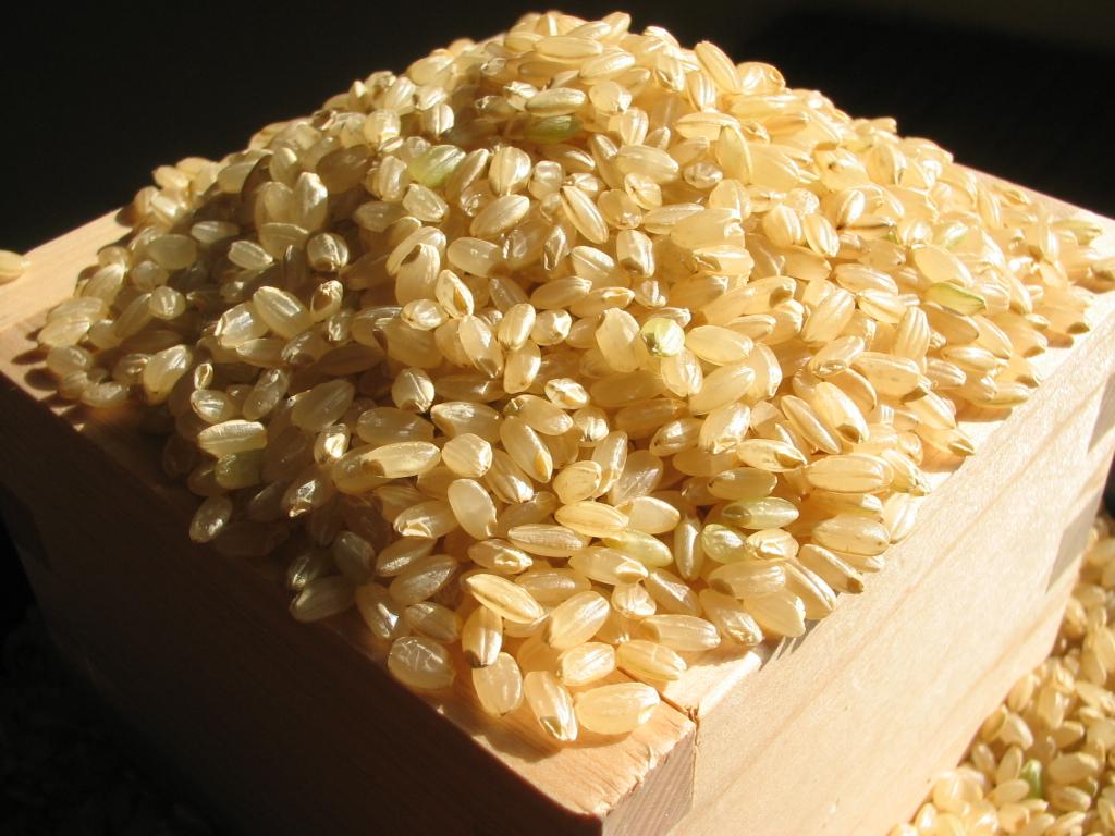 ダイエット効果が高そうなイメージの玄米。でも本当の効果って?のサムネイル画像