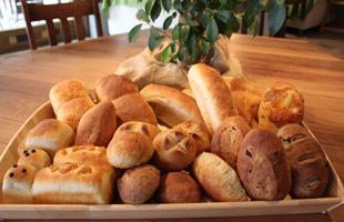 甘くておいしい菓子パン☆菓子パンのカロリーを調査しちゃいます!のサムネイル画像