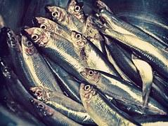 さんまのカロリーと栄養は?おすすめの美味しいレシピも紹介します!のサムネイル画像