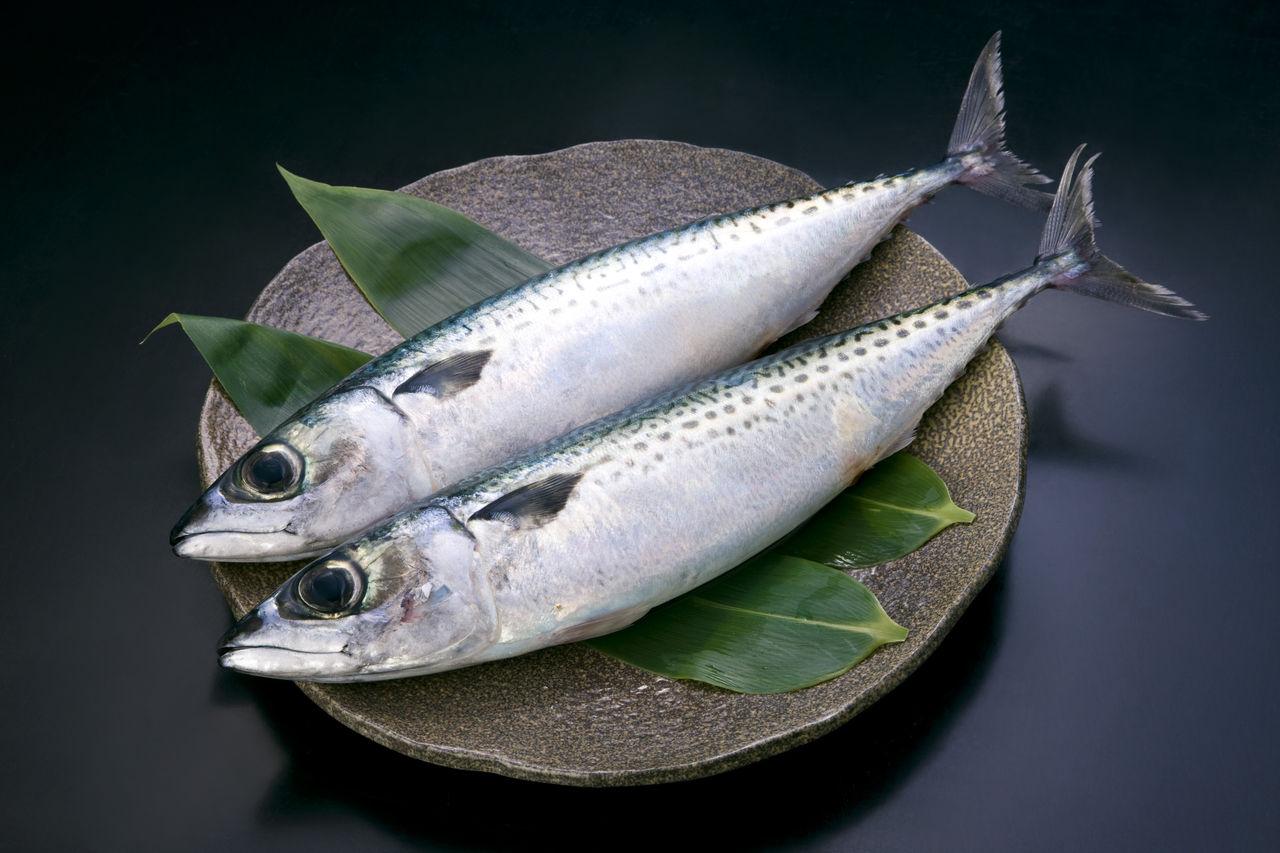 「さば」の「カロリー」を把握してヘルシー料理を美味しく食べよう!のサムネイル画像