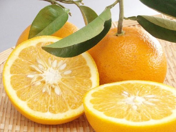 ビタミン豊富!【はっさく】の魅力!低カロリーレシピも3つご紹介!のサムネイル画像