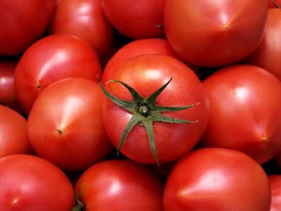 トマトの栄養素ってどうなの?気になる、健康とトマトの関係のサムネイル画像