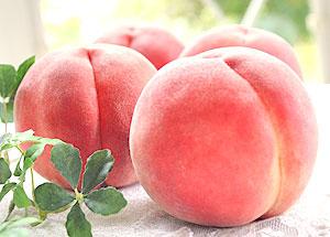 旬でとっても美味しい果物を食べて、もっとキレイになりませんか?のサムネイル画像