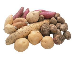 今流行の炭水化物抜きダイエット、芋類は食べても大丈夫な食材!?のサムネイル画像