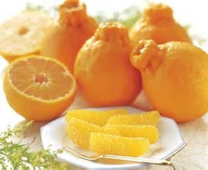 これからの季節に甘くて美味しいデコポン!そのカロリーと栄養は?のサムネイル画像
