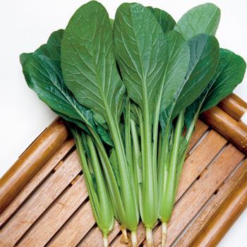 本当はすごいぞ!小松菜の実力とカロリーそして驚きの栄養成分!のサムネイル画像