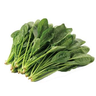 緑黄色野菜の代表!?お馴染みのほうれん草のカロリーと栄養効果のサムネイル画像
