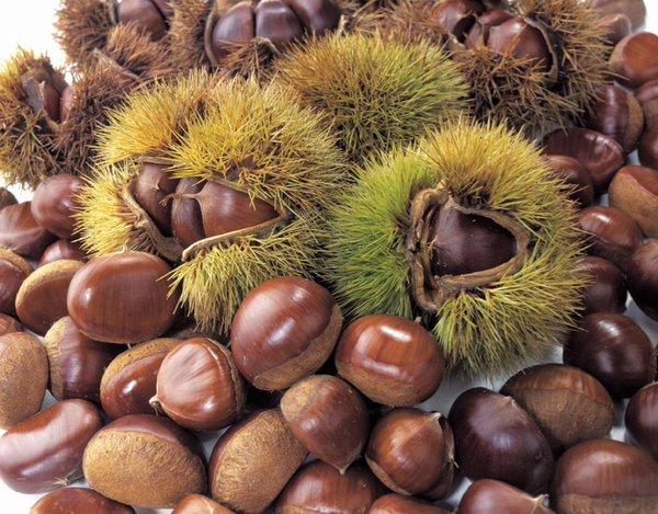 秋の味覚!栗はダイエットに向いている?気になるカロリーと栄養効果のサムネイル画像
