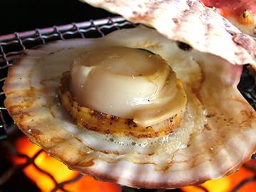 寒い季節に食べたくなるね!ホタテのカロリーと驚きの栄養素!のサムネイル画像