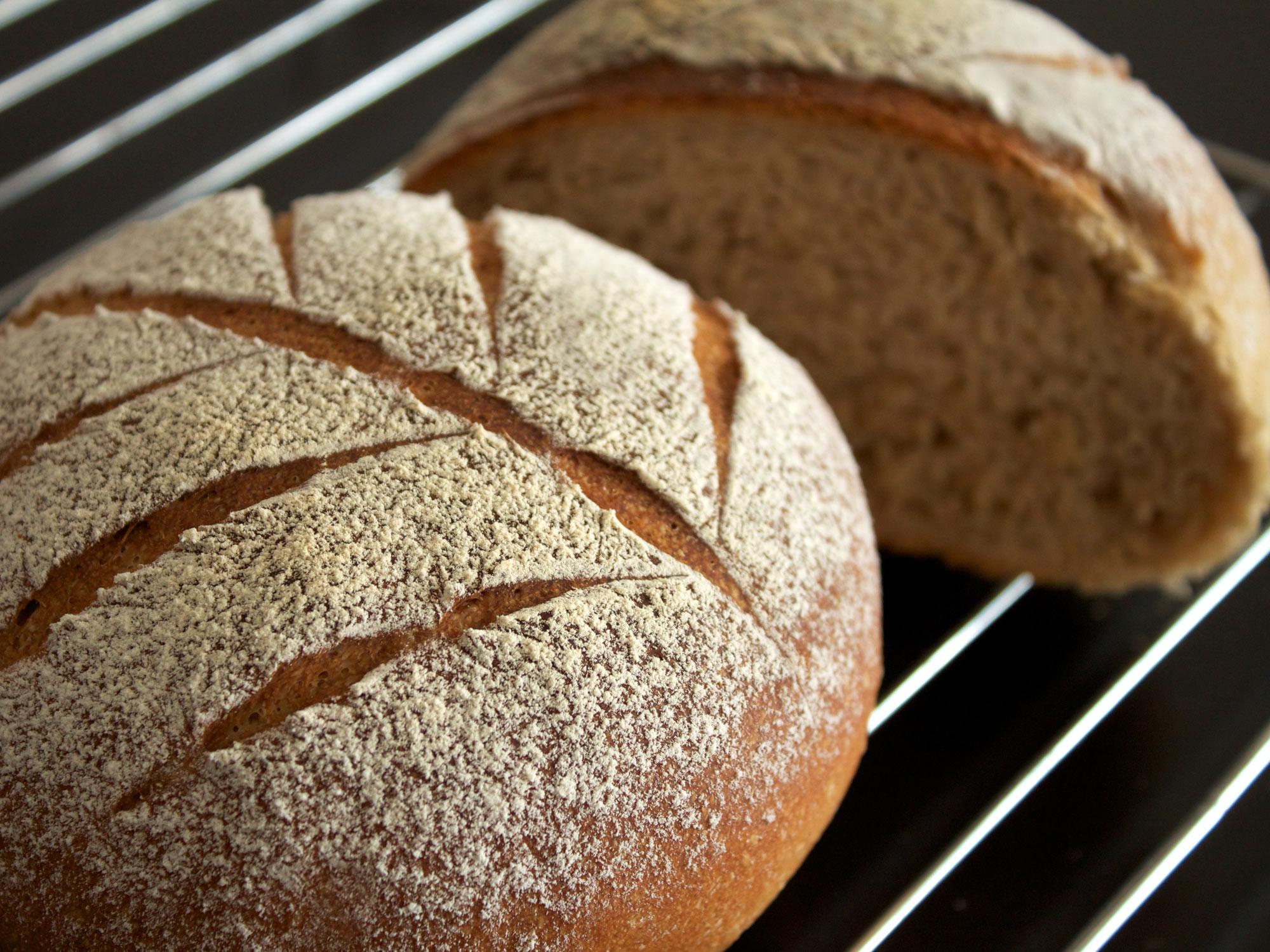 食べ始めたらハマっちゃうかも!? ライ麦パンの魅力とそのカロリーのサムネイル画像