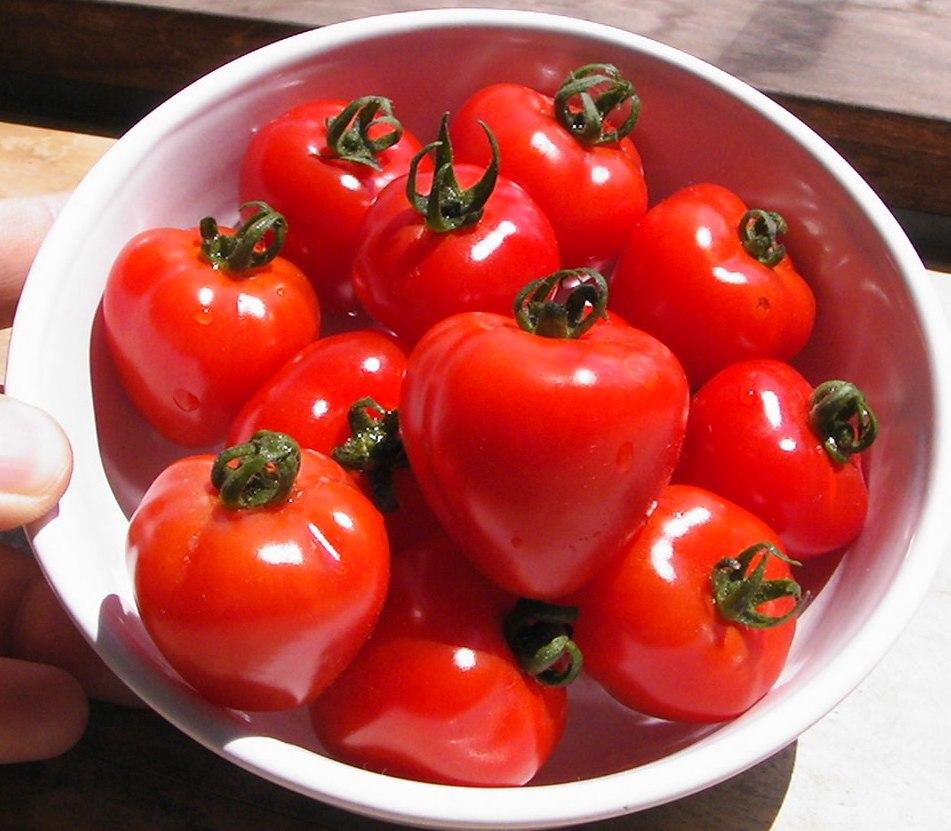 健康野菜トマトの栄養!知りたいトマトの栄養のこと!栄養効果は?のサムネイル画像