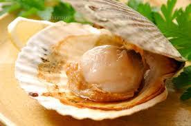 柔らかい舌触りで食べやすいホタテ!その栄養効果に迫ってみます♪のサムネイル画像