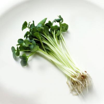 栄養満点!ピリリと辛味の利いたかいわれ大根の持つ栄養と体いい事!のサムネイル画像