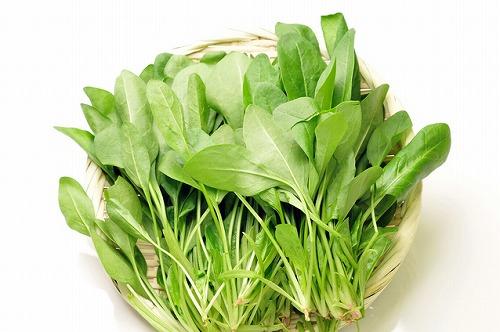 霜にあたると甘みがアップ!ほうれん草の持つ栄養とその健康効果とはのサムネイル画像