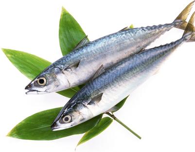 鯖って凄い!栄養たっぷりの鯖を食べるといいことがいっぱい!!のサムネイル画像