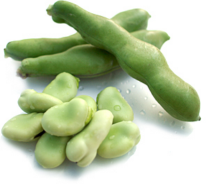そら豆の栄養とその効果は!?健康にも美容にもいいおすすめ食材のサムネイル画像