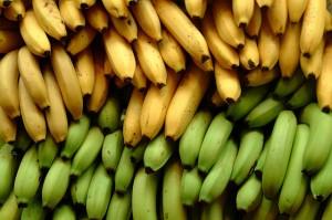 果物の代表バナナ!アレルギーがあること知ってます?そんなバナナ!のサムネイル画像