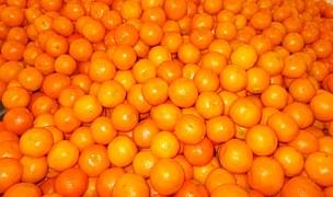 2月から旬の季節!柑橘系果物はっさくとは?カロリーと美容効果は?のサムネイル画像